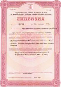 Как выглядит лицензия