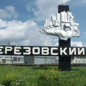 Куда сдать макулатуру в Березовском?