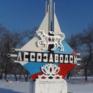Куда сдать макулатуру в Лесозаводске?