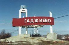 Куда сдать макулатуру в Гаджиево?