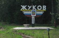 Куда сдать макулатуру в Жукове?