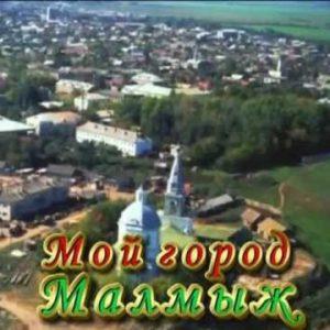 Куда сдать металлолом в Малмыже?