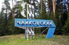 Куда сдать макулатуру в Чайковске?