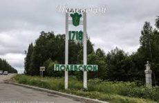 Куда сдать макулатуру в Полевском?