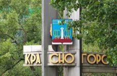 Куда сдать макулатуру в Красногорске?