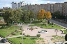 Куда сдать макулатуру в Ивантеевке?