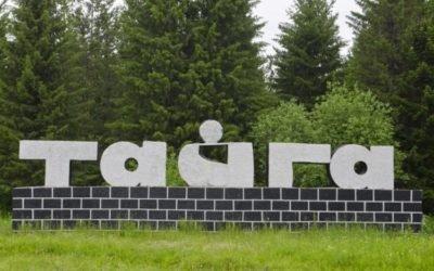 Куда сдать металлолом в Тайге?