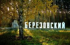 Куда сдать металлолом в Берёзовском?