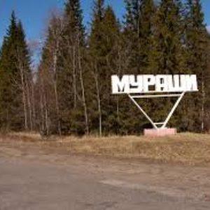 Куда сдать металлолом в Мураши?