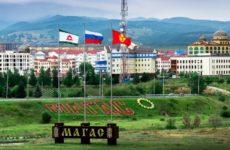 Куда сдать макулатуру в Магасе?