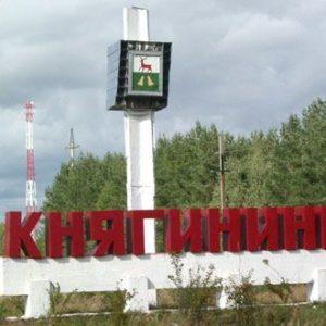 Нижегородская область макулатура прием макулатуры в монино