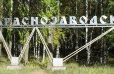 Куда сдать макулатуру в Краснозаводске?