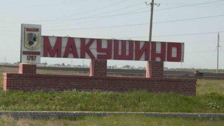 Куда сдать макулатуру в Макушино?